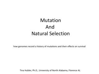 Mutation And  Natural Selection
