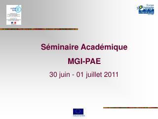 Séminaire Académique  MGI-PAE 30 juin - 01 juillet 2011