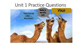 Unit 1 Practice Questions