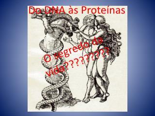 Do DNA às Proteínas