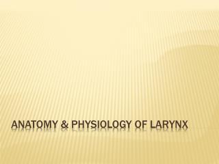 Anatomy & Physiology of larynx