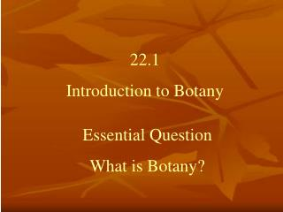 What is botany