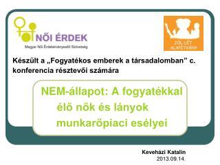 NEM-állapot: A fogyatékkal  élő nők és lányok munkarőpiaci esélyei