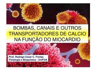 BOMBAS, CANAIS E OUTROS TRANSPORTADORES DE CALCIO NA FUNÇÃO DO MIOCARDIO