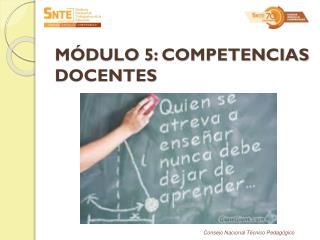 MÓDULO 5 :  COMPETENCIAS DOCENTES