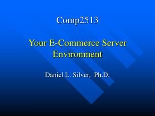 Comp2513  Your E-Commerce Server Environment