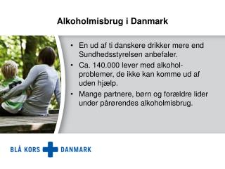 Alkoholmisbrug i Danmark