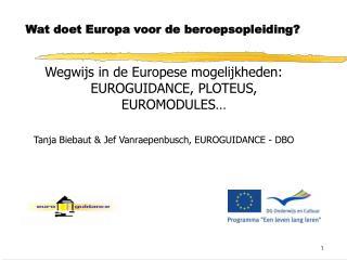 Wat doet Europa voor de beroepsopleiding?