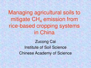 Managing agricultural soils to mitigate CH 4  emission from rice-based cropping systems in China