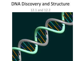 DNA Discovery and Structure