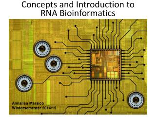 Concepts and Introduction to RNA Bioinformatics