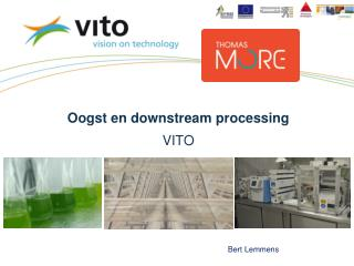 Oogst en downstream processing VITO
