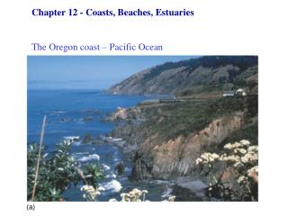 Chapter 12 - Coasts, Beaches, Estuaries   The Oregon coast – Pacific Ocean