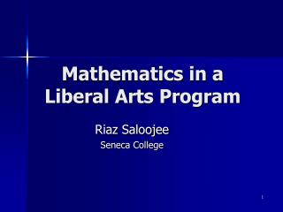 Mathematics in a  Liberal Arts Program