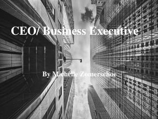 CEO/ Business Executive