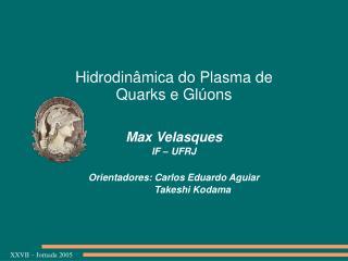 Hidrodinâmica do Plasma de  Quarks e Glúons
