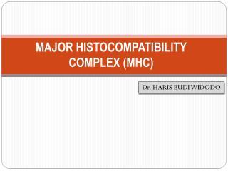 MAJOR HISTOCOMPATIBILITY COMPLEX (MHC)