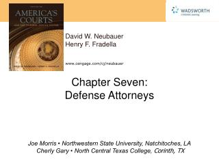 Chapter Seven:  Defense Attorneys