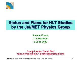 Status and Plans for HLT Studies by the Jet/MET Physics Group