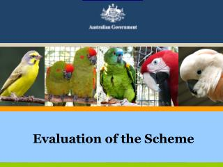 Evaluation of the Scheme
