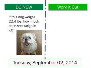 If this dog weighs 22.4 lbs, how much does she weigh in kg?