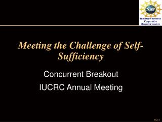 Meeting the Challenge of Self-Sufficiency
