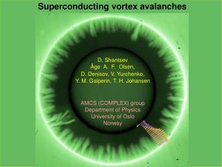 Superconducting vortex avalanches