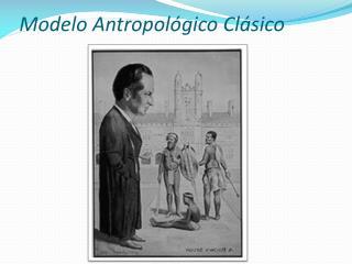 Modelo Antropol gico Cl sico