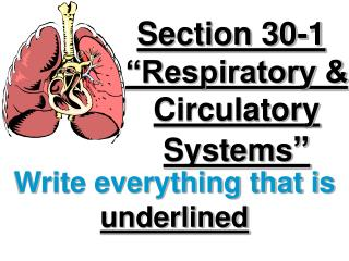 Section 30-1 �Respiratory & Circulatory Systems �