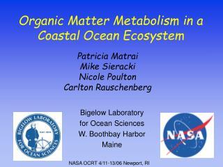 Organic Matter Metabolism in a Coastal Ocean Ecosystem