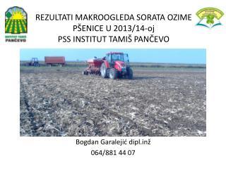 REZULTATI MAKROOGLEDA SORATA OZIME PŠENICE U 2013/14-oj PSS INSTITUT TAMIŠ PANČEVO