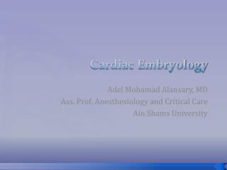 Cardiac Embryology