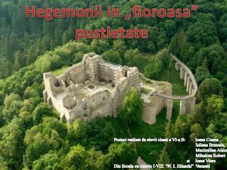 "Hegemonii in ""fioroasa"" pustietate"