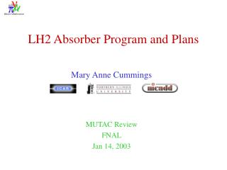 LH2 Absorber Program and Plans