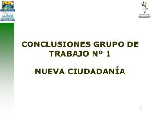 CONCLUSIONES GRUPO DE TRABAJO Nº 1 NUEVA CIUDADANÍA