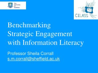 Benchmarking  Strategic Engagement  with Information Literacy