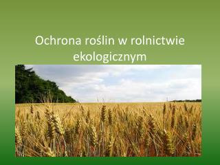 Ochrona roślin w rolnictwie ekologicznym