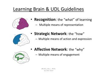 Learning Brain & UDL Guidelines