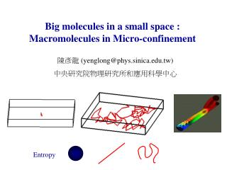 Big molecules in a small space : Macromolecules in Micro-confinement