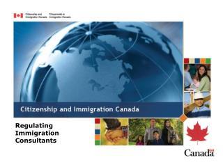 Regulating Immigration  Consultants