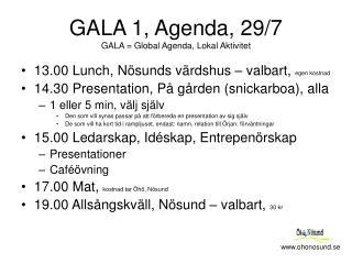 GALA 1, Agenda, 29/7 GALA = Global Agenda, Lokal Aktivitet