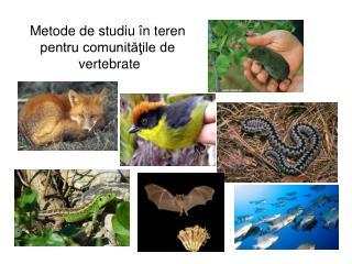 Metode de studiu  în teren  pentru comunităţile de  vertebrate