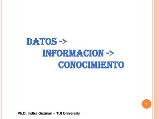 Ph.D.  Indira Guzman – TUI University