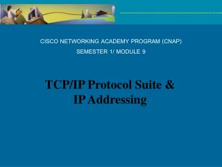 CISCO NETWORKING ACADEMY PROGRAM (CNAP) SEMESTER 1/ MODULE 9