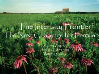 The Intensity Frontier The Next Challenge for Fermilab