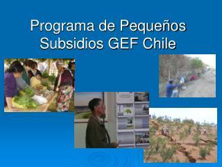 Programa de Pequeños Subsidios GEF Chile