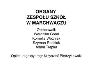 ORGANY  ZESPOŁU SZKÓŁ W MARCHWACZU Opracowali: Weronika Góral Kornelia Woźniak Szymon Rodziak
