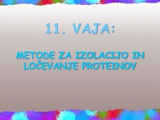 11. VAJA: