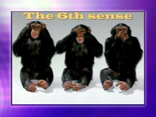 The 6th sense