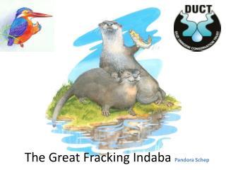 The Great Fracking  Indaba  Pandora  Schep